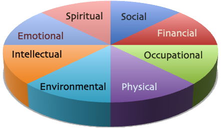 Wellness wheel 2